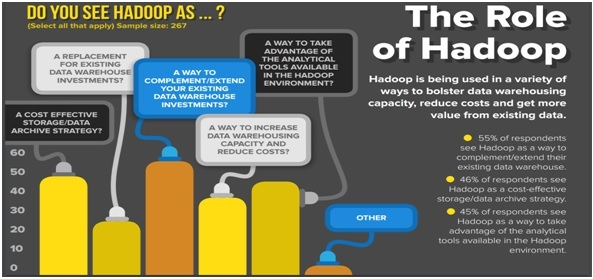 The Role Of Hadoop