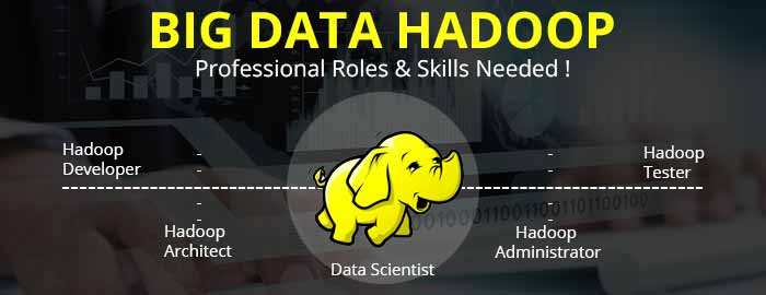 Big Data Hadoop Professionals – Job Responsibilities & Skills!