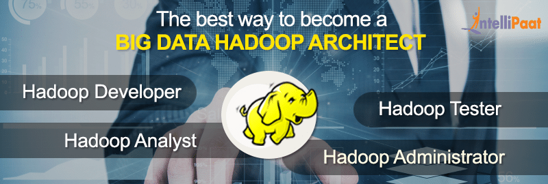 Big Data Hadoop Architect Learning Path Explored!