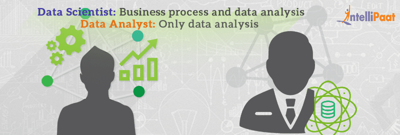 Differentiating Between Data Analyst and Data Scientist