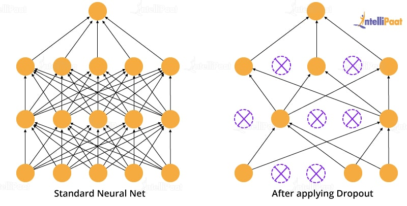 Dropouts In Neural Networks