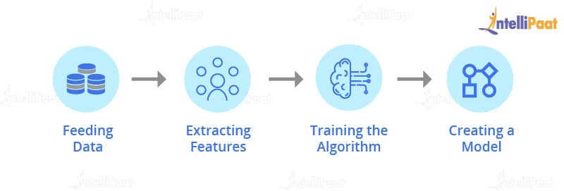 working of fraud detection algorithms using machine learning-Fraud detection algorithms-Intellipaat