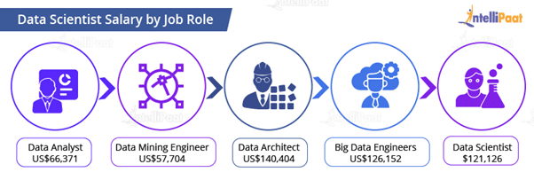 Data Scientist Salary by Job Role