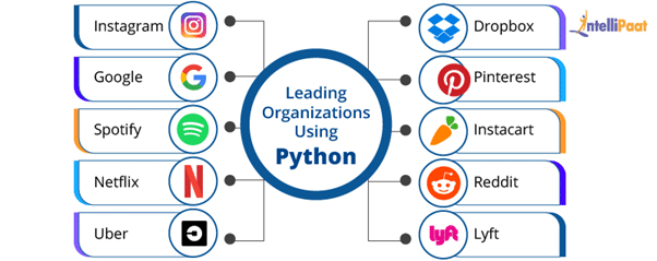 Leading Organizations That Use Python
