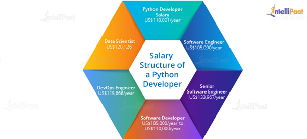 Python Developer Salary