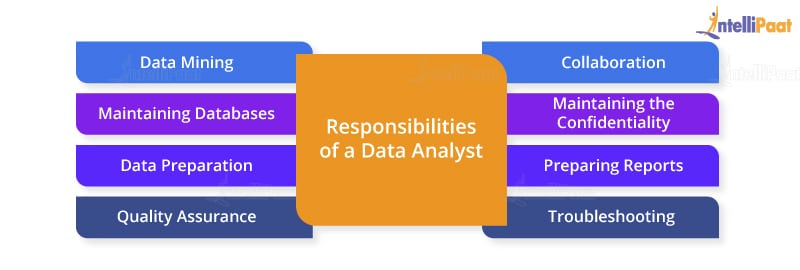 Data Analyst Roles and Responsibilities