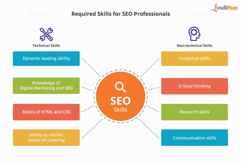 SEO Skills
