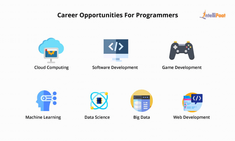 Career Opportunities for Programmers