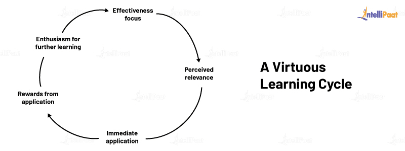 A Virtuous Learning Cycle