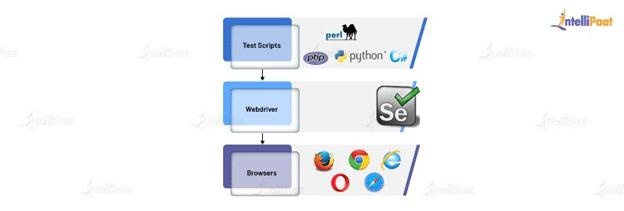 Why Selenium Python