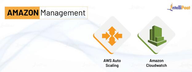 Amazon Management Services