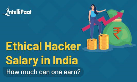 Ethical Hacker Salary in India Category image