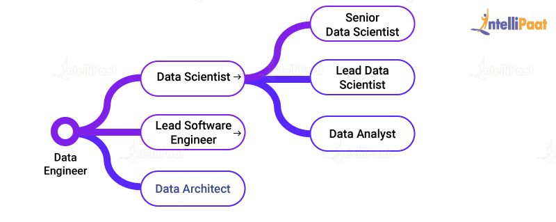 Career Path for a Data Scientist