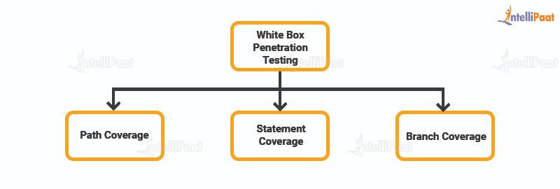 White Box Penetration Testing Techniques