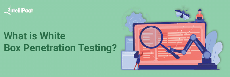 What is White Box Penetration Testing?