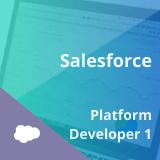 Salesforce Platform Developer I Certification Training