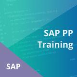 SAP PP Training Course Online