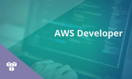 AWS Developer Certification Training