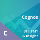 Cognos BI, TM1 and Insight Training – Combo Course