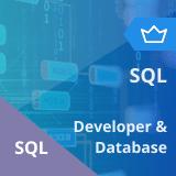 SQL Developer and SQL DBA Training Master's Program