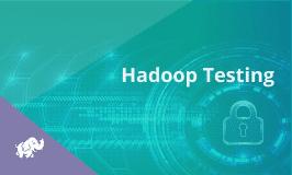 Hadoop Testing Training
