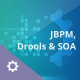 JBPM, Drools and SOA Training: Combo Course