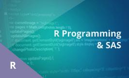 R Programming, SAS Training – Combo