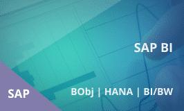 SAP BI Training - Combo Course