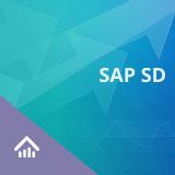 SAP SD Training Certification Course – SAP Sales & Distribution