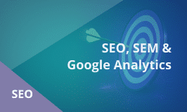 SEO, SEM and Google Analytics Master's Course