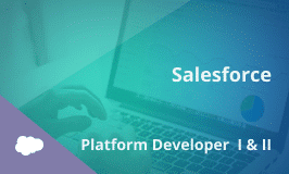 Salesforce Platform Developer I & II Certification Training