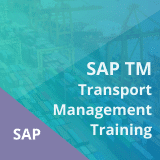 SAP TM Transport Management Training