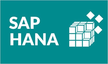 SAP HANA Training Image
