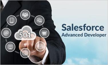 Salesforce (501) Developer Training - Advanced Salesforce Developer Certification Image
