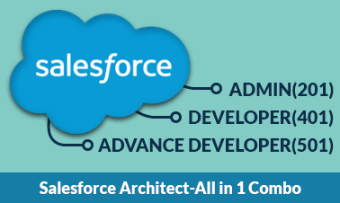 Salesforce Training for 201,401(App Builder),501 - Combo Image