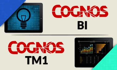 Cognos BI TM1 Training Image