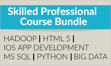 skilled professional course bundle