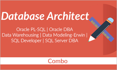 Database Architect Training Combo Course Image