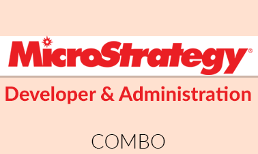 Microstrategy Developer and Administration Combo Image