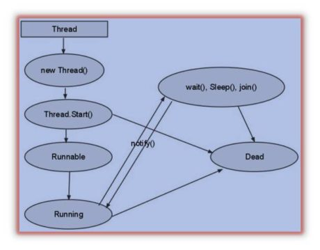 Lifecycle of thread