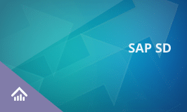 SAP SD Training Certification Course - SAP Sales & Distribution