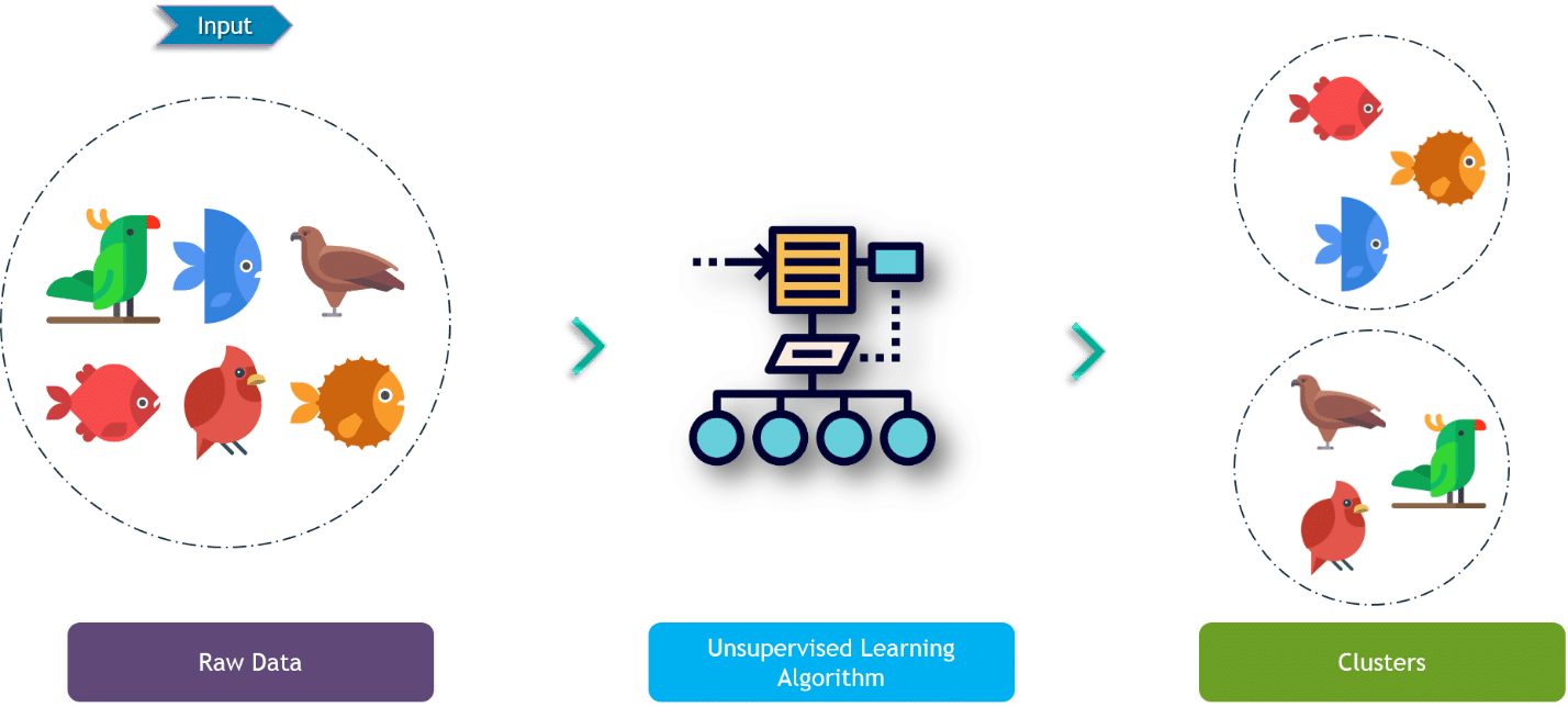 Machine Learning Algorithms | Machine Learning | Intellipaat
