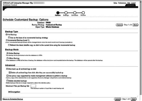 customizing a backup job in oem